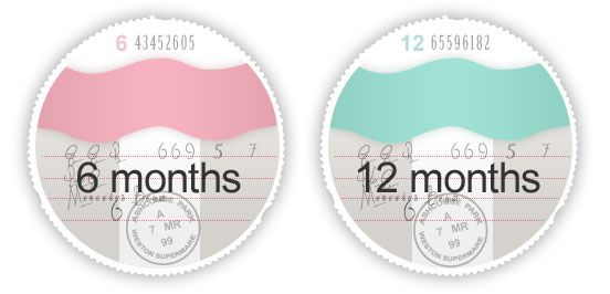 Paper road tax discs are abolished